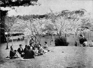 飛鳥山の桜狩・明治33